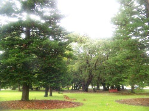 kingspark22.jpg